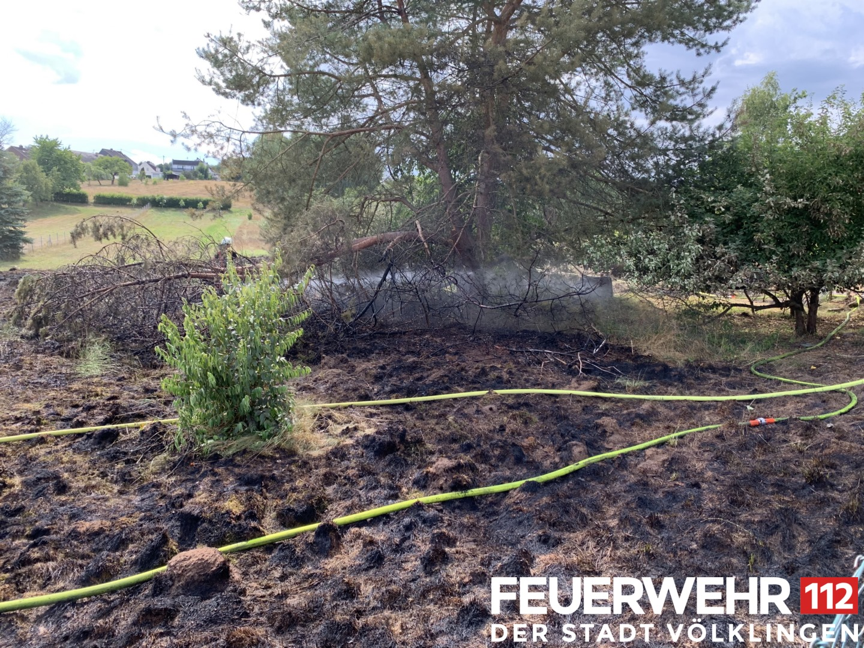 2019-08-09-Flächenbrand-Lb8-3-Kopie