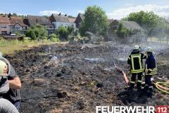 2019-08-09-Flächenbrand-Lb8-1-Kopie
