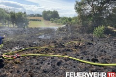2019-08-09-Flächenbrand-Lb8-2-Kopie